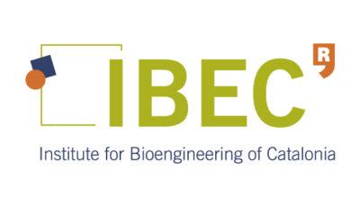 logo vector IBEC