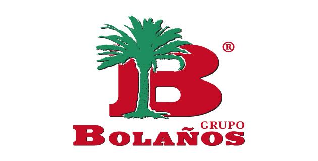logo vector Grupo Bolaños