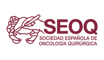 logo vector SEOQ