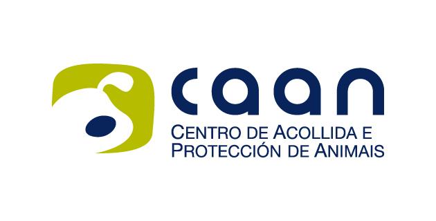 logo vector CAAN