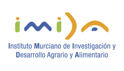logo vector IMIDA