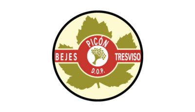 logo vector DOP Picón