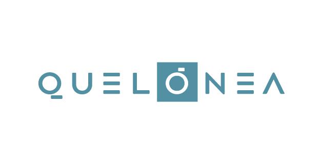 logo vector Quelonea