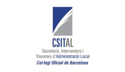 logo vector CSITAL