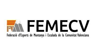 logo vector FEMECV