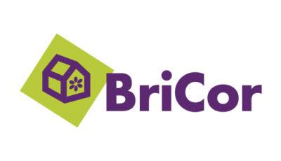 logo vector BriCor