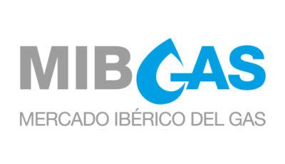logo vector MIBGAS