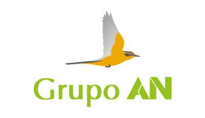 logo vector Grupo AN