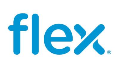 logo vector Flex