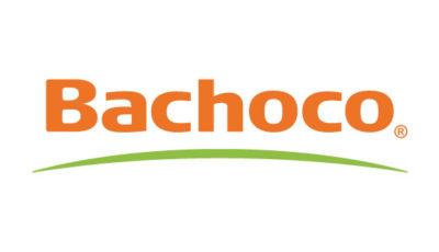 logo vector Bachoco