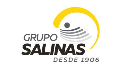 logo vector Grupo Salinas