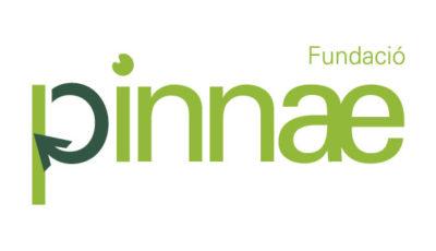 logo vector Fundacion Pinnae