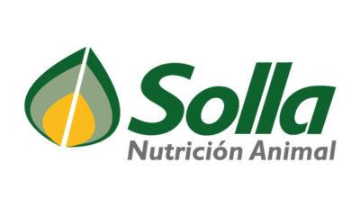 logo vector SOLLA