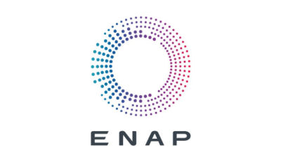 logo vector ENAP