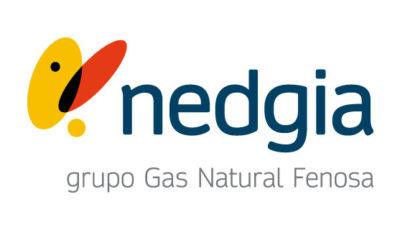 logo vector Nedgia