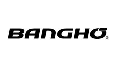 logo vector Banghó