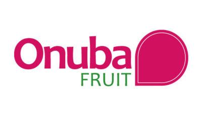 logo vector Onubafruit