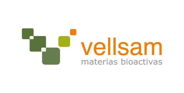 logo vector Vellsam