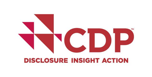 logo vector CDP