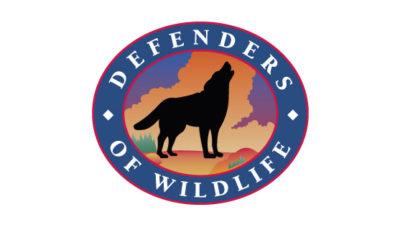 logo vector Defenders of Wildlife