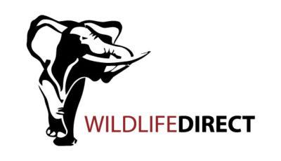 logo vector WildlifeDirect