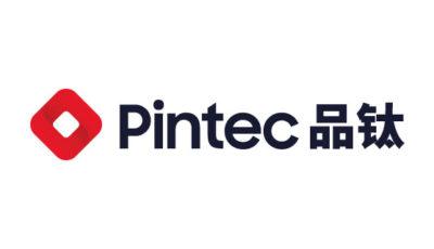 logo vector Pintec