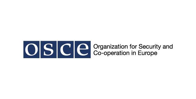 logo vector OSCE