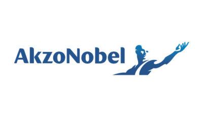logo vector AzkoNobel