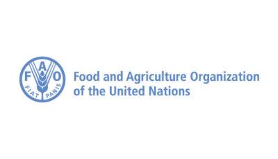 logo vector FAO