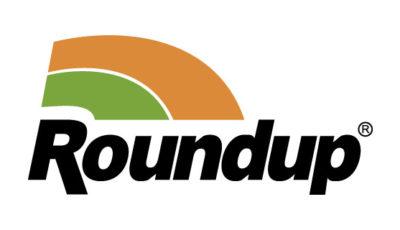 logo vector Roundup