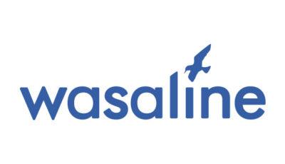 logo vector Wasaline