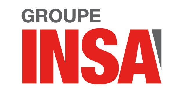 logo vector Groupe Insa