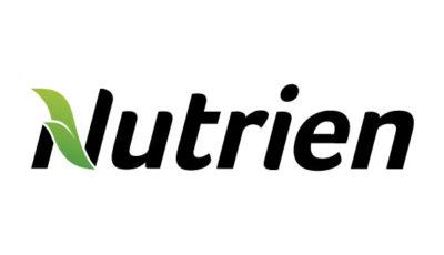 logo vector Nutrien