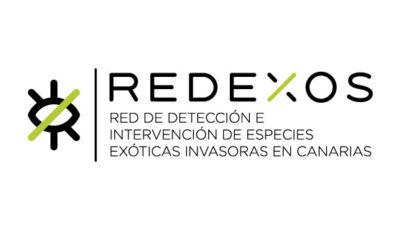 logo vector REDEXOS