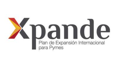 logo vector Xpande