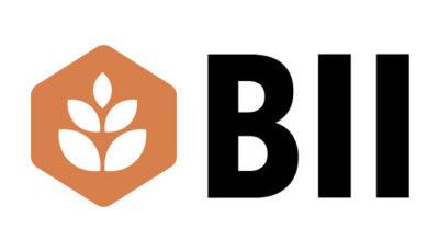 logo vector BII