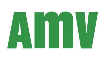 logo vector AMV Seguros