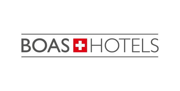 logo vector Groupe Boas