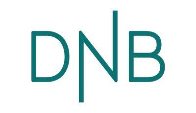 logo vector DNB