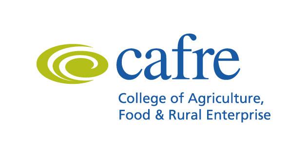 logo vector CAFRE